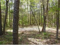 View 3506 Forest Lawn Dr Weddington NC
