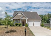 View 868 Ivy Trail Way Fort Mill SC