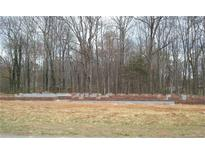 View 247 Willow Bend Ln China Grove NC