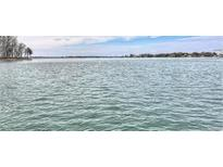 View 20417 Harborgate Ct # 511 Cornelius NC