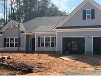 View 129 Windstone Dr Troutman NC