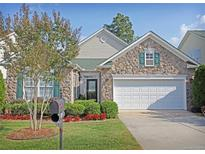 View 807 Platinum Dr Fort Mill NC